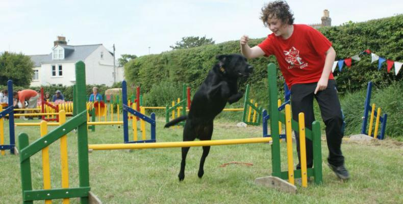Dog jumping in dog show at Guernsey South Show in St Martins