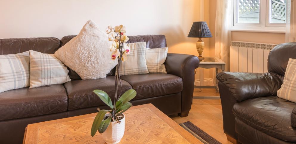 C3 living room